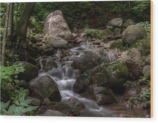 Parfrey's Glen Creek Wood Print