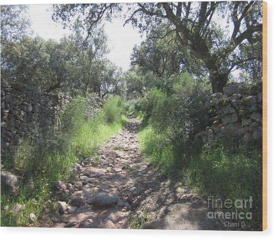 Path Near Almoharin Wood Print