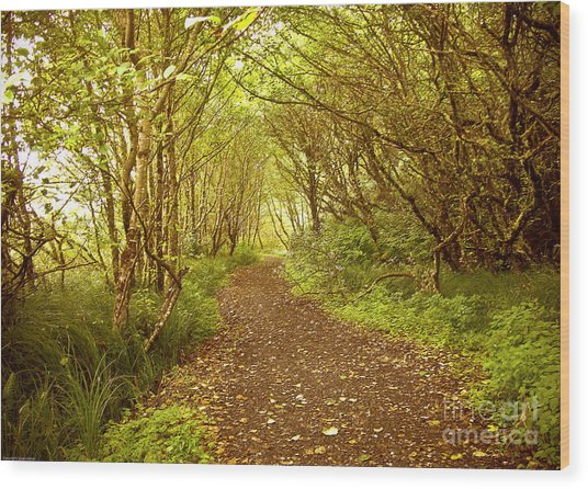 Path To The Beach Wood Print