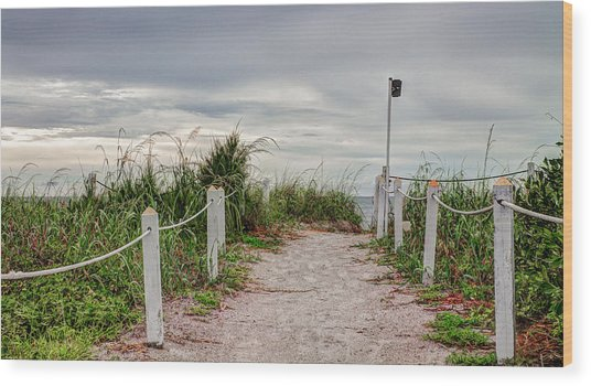 Pathway To The Beach Wood Print