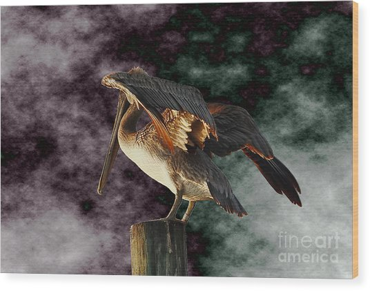 Pelican On Post Wood Print
