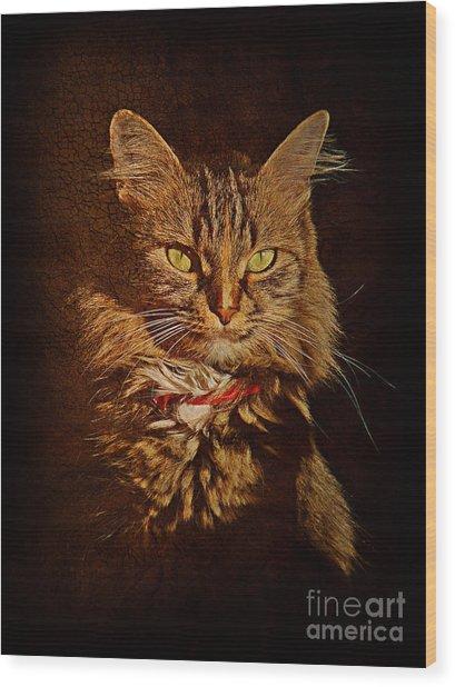 Portrait Of A Tramp Cat Wood Print