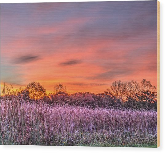 Illinois Prairie Moments Before Sunrise Wood Print