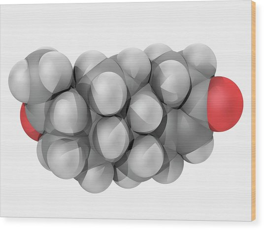 Progesterone Hormone Molecule Wood Print by Laguna Design/science Photo Library