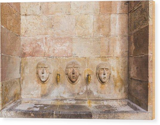 Public Drinking Fountain Barcelona Spain Wood Print