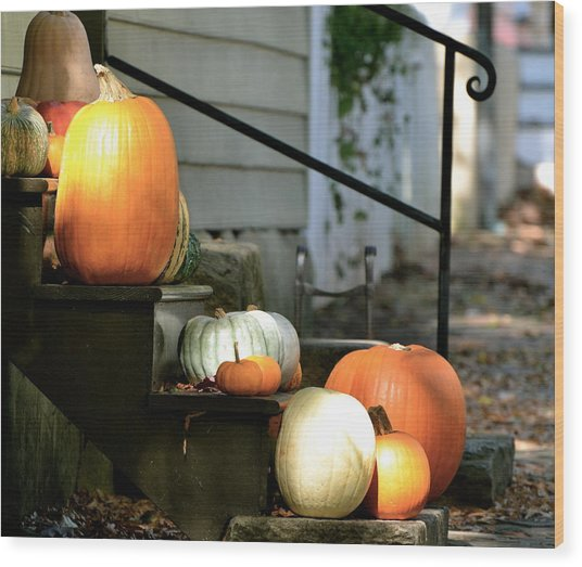 Pumpkin Collection Wood Print