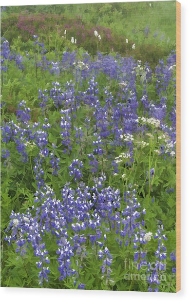 Rainier's Wildflowers Wood Print