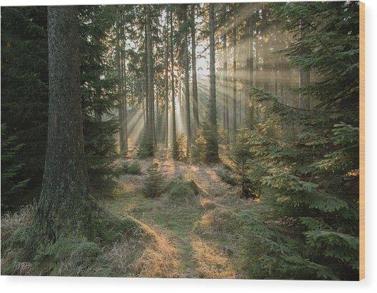 Rays, Part 2 Wood Print