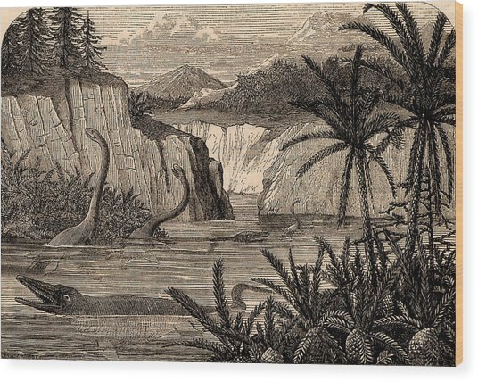 Reconstruction Of Dinosaurs Wood Print by Universal History Archive/uig