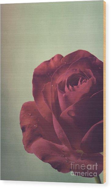 Red Rose Wood Print by Jelena Jovanovic