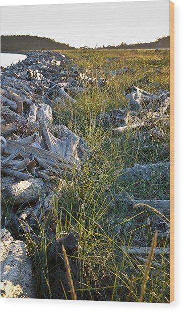 Restful July Beachhead Wood Print by Tom Trimbath