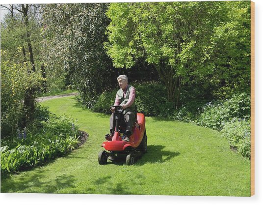 Ride-on Lawn Mower Wood Print by Sheila Terry
