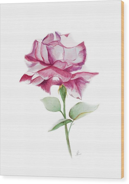 Rose 2 Wood Print by Nancy Edwards