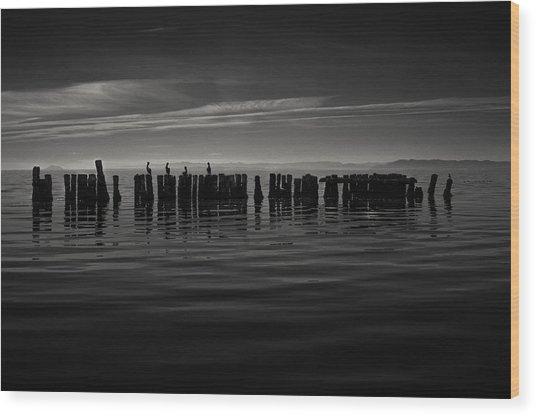 Salton Sea Piles Wood Print