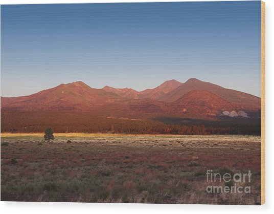 San Francisco Peaks Sunrise Wood Print