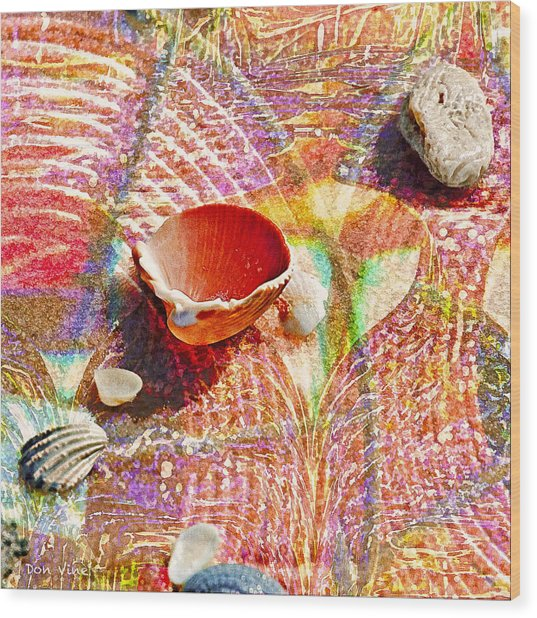 Sea Shells In A Row Wood Print