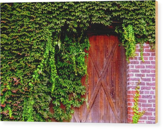 Wood Print featuring the photograph Secret Door by Jeff Lowe