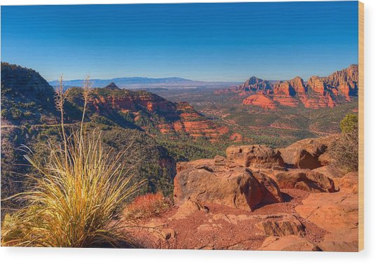 Sedona Hike Wood Print