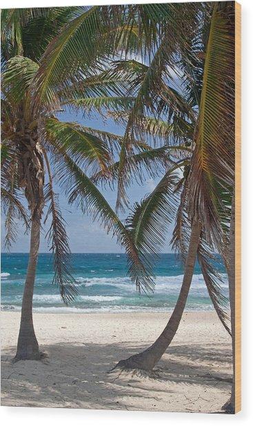 Serene Caribbean Beach  Wood Print