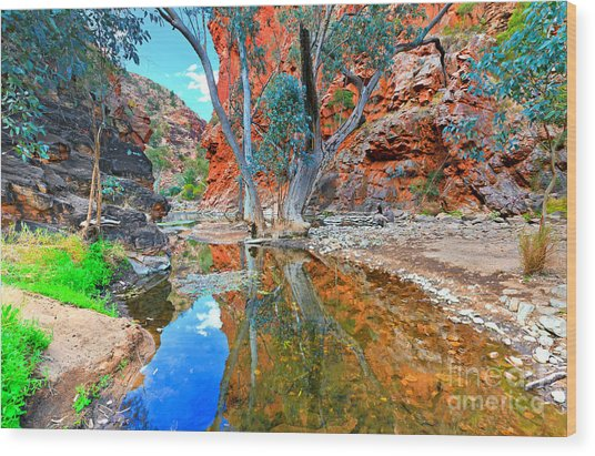 Serpentine Gorge Central Australia Wood Print