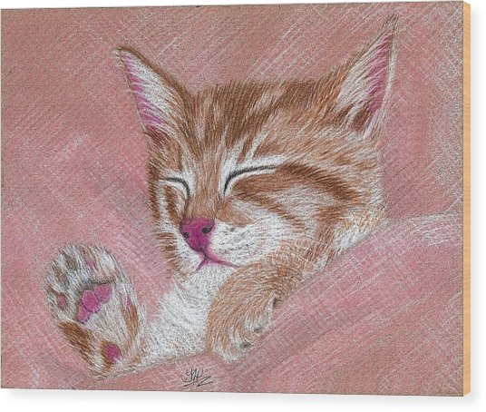 Sleeping Kitty Wood Print