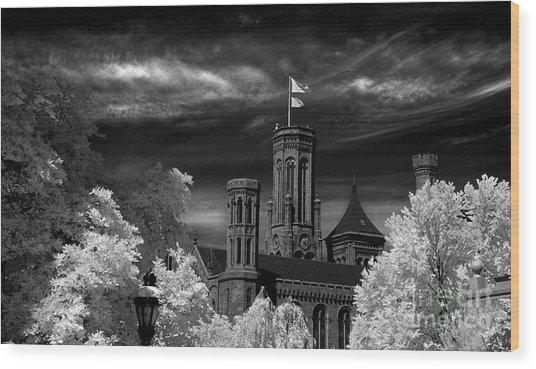 Smithsonian Castle Wood Print by Mike Kurec