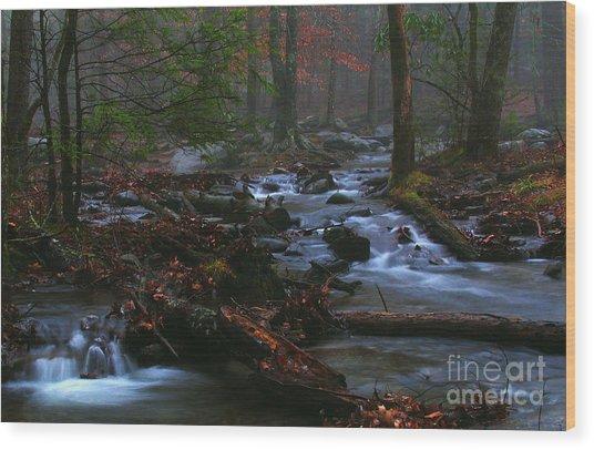 Smoky Mountain Color Wood Print