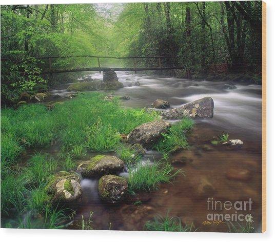 Smoky Mountain Stream 2009 Wood Print
