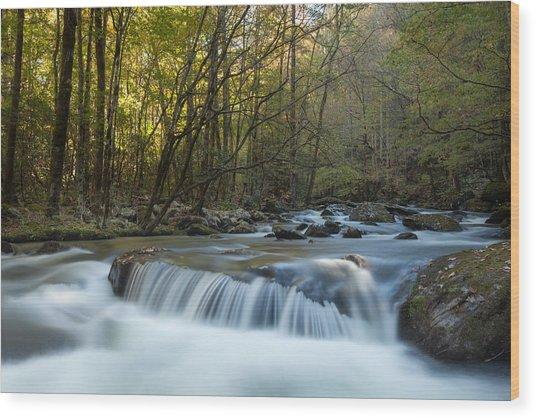 Smoky Mountain Stream Wood Print by Doug McPherson