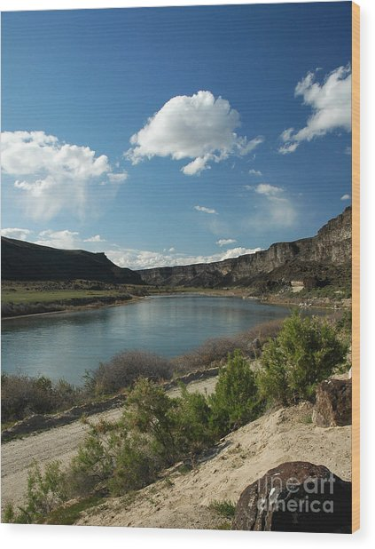 711p Snake River Birds Of Prey Area Wood Print
