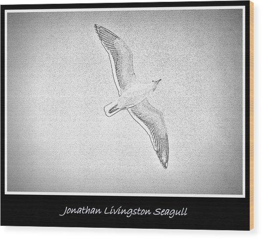 Soaring Seagull Wood Print