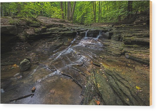 South Chagrin Reservation Wood Print