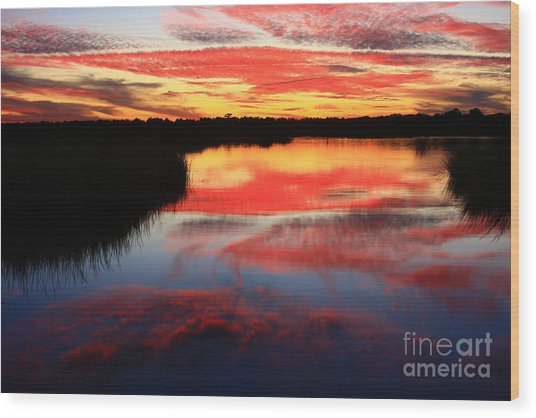 South Ponte Vedra Coast Wood Print