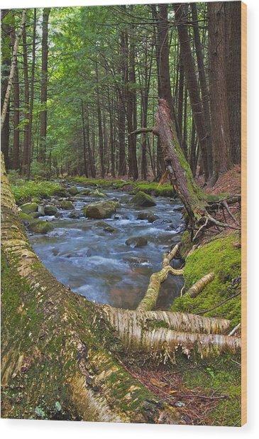 Spirit Of The Stream Wood Print