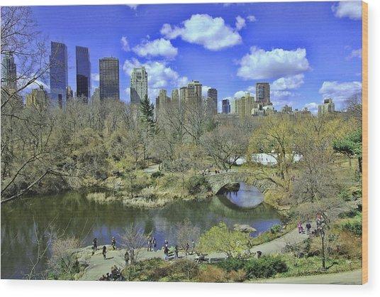 Springtime In Central Park Wood Print