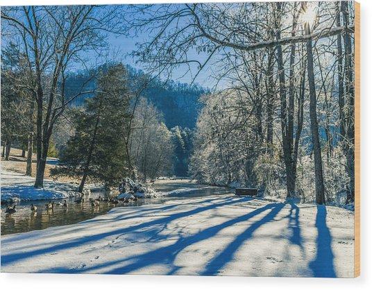 Steele Creek Winter Wood Print