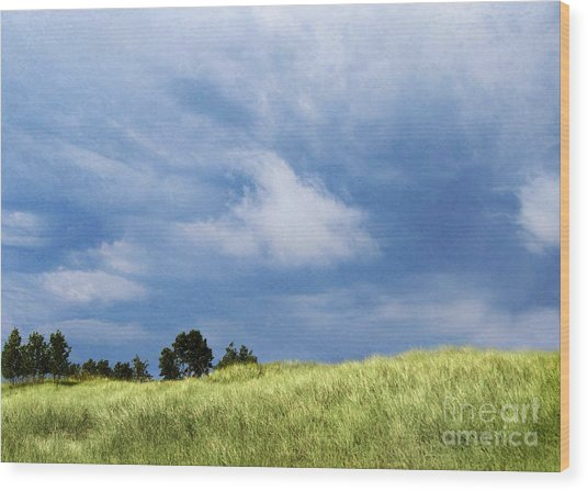 Storm Over Grassy Dune Wood Print