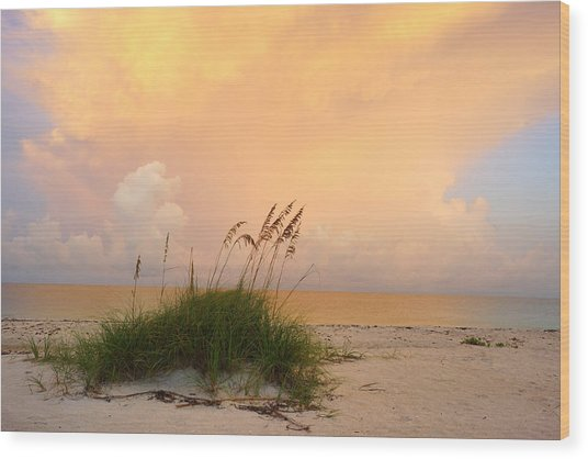 Summer Sunrise On Nokomis Beach Wood Print