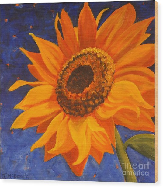 Sunflower Gazing Wood Print