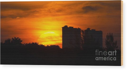 Sunrise  Wood Print