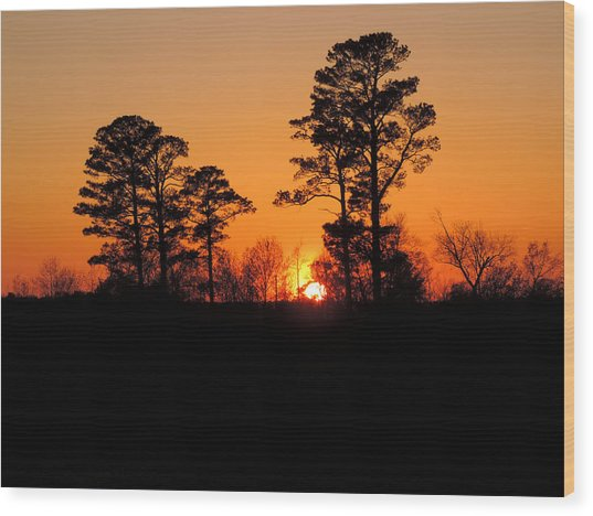 Sunset 7 Wood Print by Stephanie Kendall