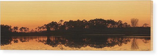 Sunset At St. Mark's Wood Print by Karen Lindquist