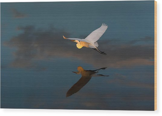 Sunset Flight Wood Print