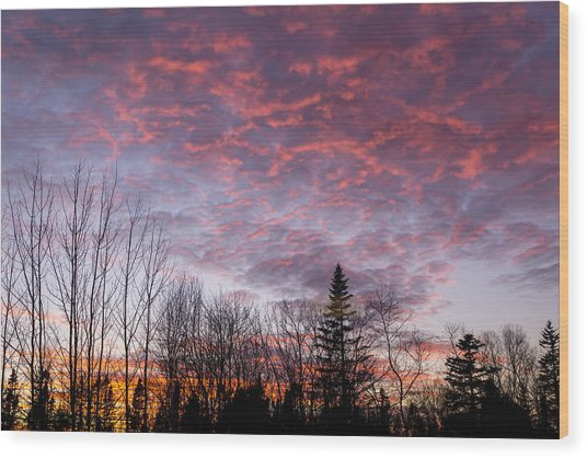 Sunset Jonesport Maine  Wood Print