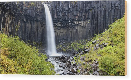 Svartifoss (black Fall Wood Print