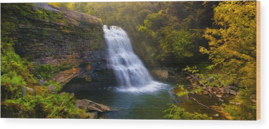 Swallow Falls Wood Print