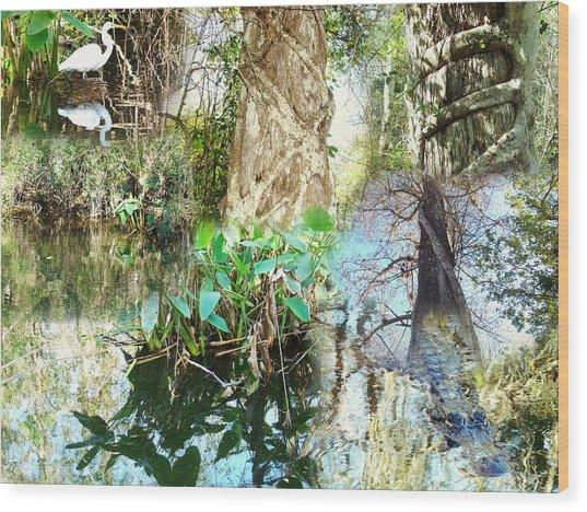 Swamp Life Wood Print by Van Ness