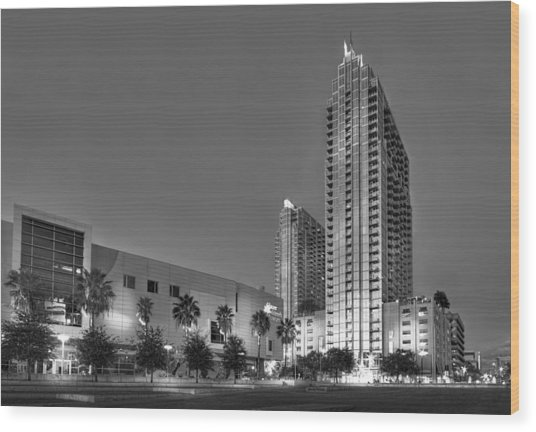 Tampa Skyline Wood Print