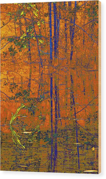 Tapestry Wood Print by Steve Warnstaff
