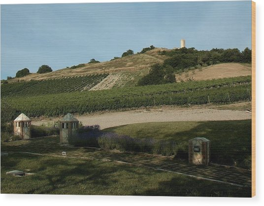 Tarquinia Countryside Wood Print